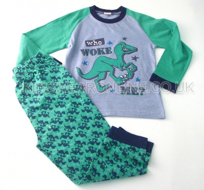Boys Dinosaur Pyjama