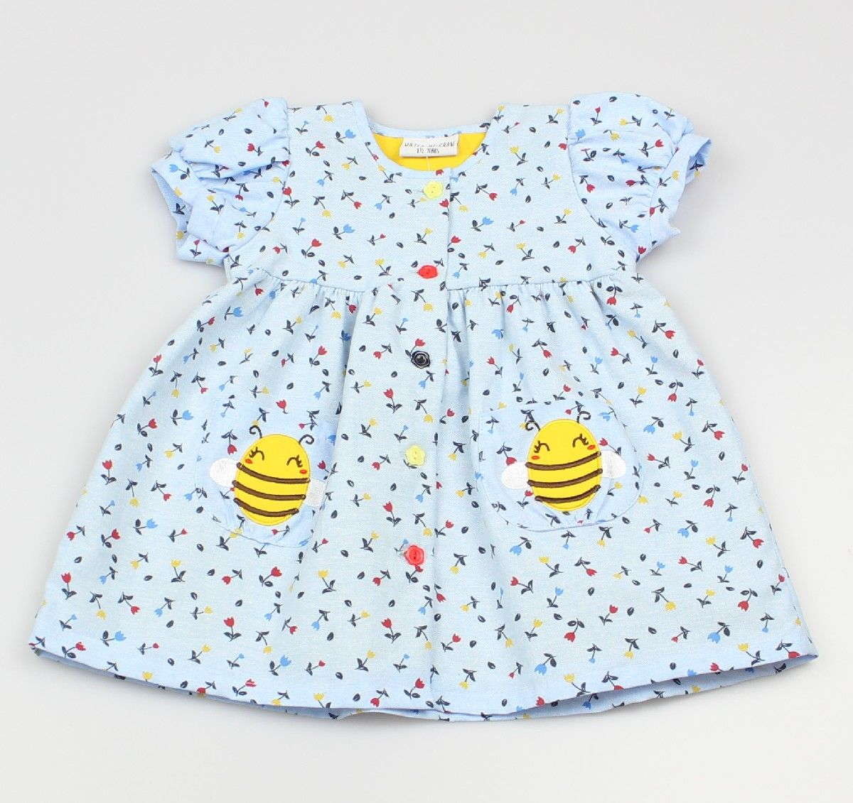 AOP Dress Lined Chambray/Bugs